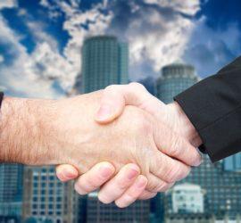 newline-oferta wspolpracy